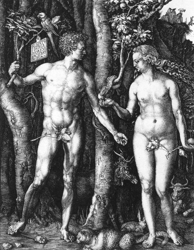 26554-adam-and-eve-d-rer-albrecht