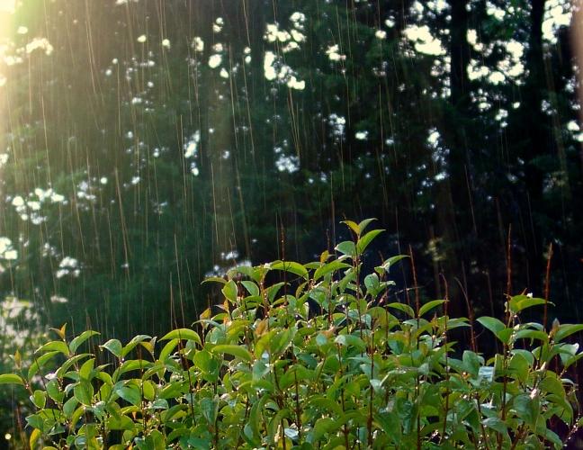 soleil-et-pluie.jpg