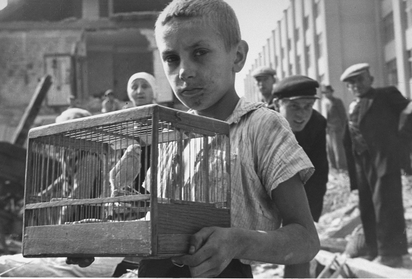 125._warsaw_ghetto_boy_canary.jpg