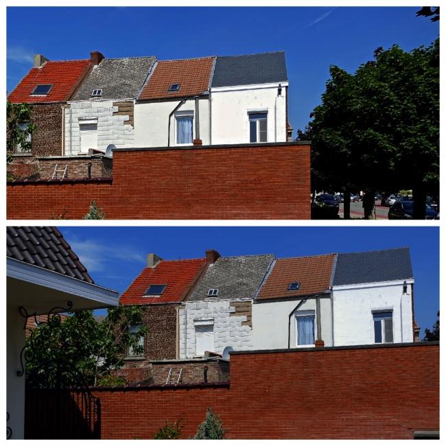 Collage_Fotorhuizenrij.jpg