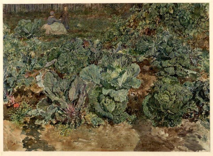 groenten rudolf
