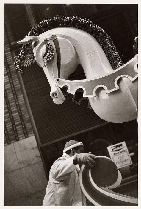 stettner_louis_2008_paradepaard