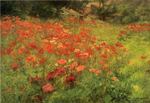 2-in-poppyland