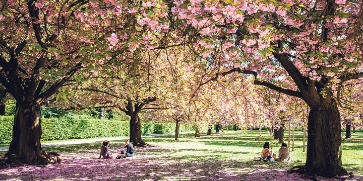 Grand-Paris-des-sorties-pour-profiter-du-printemps