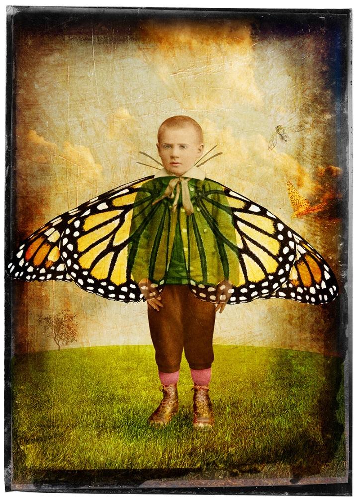 forman_fran_butterflyboy_2009