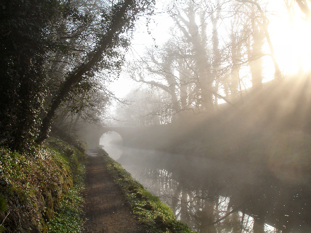 Canal_towpath_early_one_spring_morning_-_geograph.org.uk_-_671597