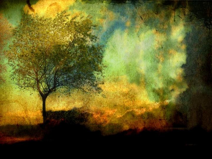 PS1-Tree