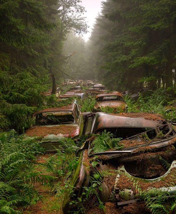 2chatillon-car-graveyard-abandoned-cars-cemetery-belgium-4