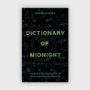 dictionaryofmidnight600x600-01