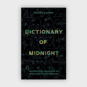 dictionaryofmidnight600x600-01